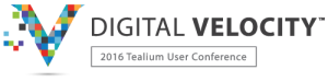Digital-Velocity-Logo