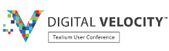 Logo Digital Velocity Londres 2017